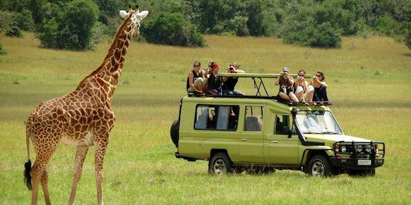 Tanzania Hotel Safari Package